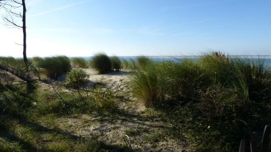 BISCAROSSE plage La Lagune dimanche 19 novembre 2017   18