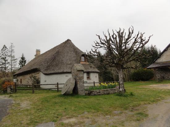LIMOUSIN avril 2019-2