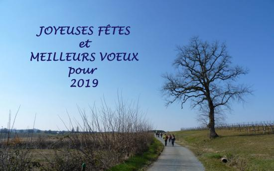 Voeux2019 fileminimizer 1